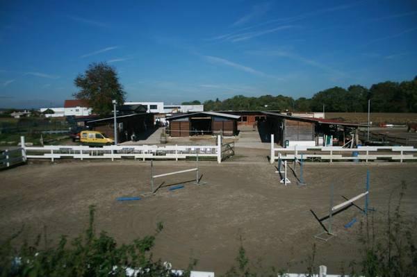 centre equestre 3 frontieres bartenheim